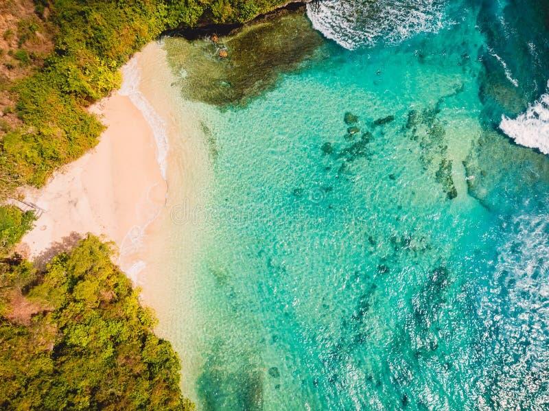 Εναέρια άποψη της τροπικής παραλίας με τον τυρκουάζ ωκεανό κρυστάλλου στο Μπαλί, αμμώδης παραλία διακοπών στοκ φωτογραφία