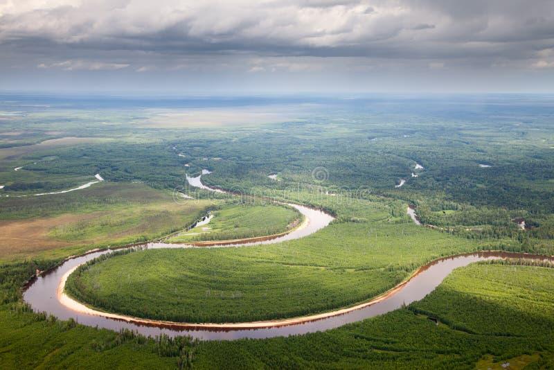Τοπ άποψη του δασικού ποταμού στοκ εικόνα με δικαίωμα ελεύθερης χρήσης