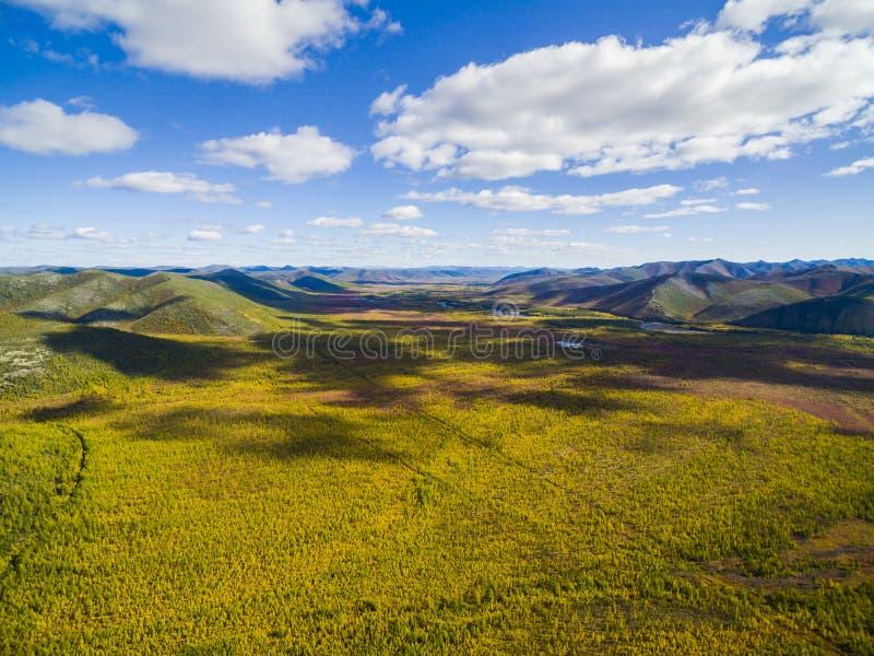 Εναέρια άποψη του δάσους στην Άπω Ανατολή, Ρωσία στοκ εικόνες με δικαίωμα ελεύθερης χρήσης
