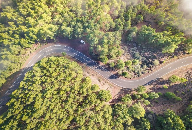 Εναέρια άποψη του δρόμου μέσα στο δάσος με τα δέντρα σε Teide Tenerife στοκ φωτογραφίες