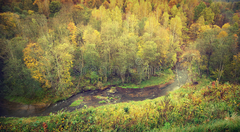 Εναέρια άποψη του ποταμού στο δάσος στοκ φωτογραφίες