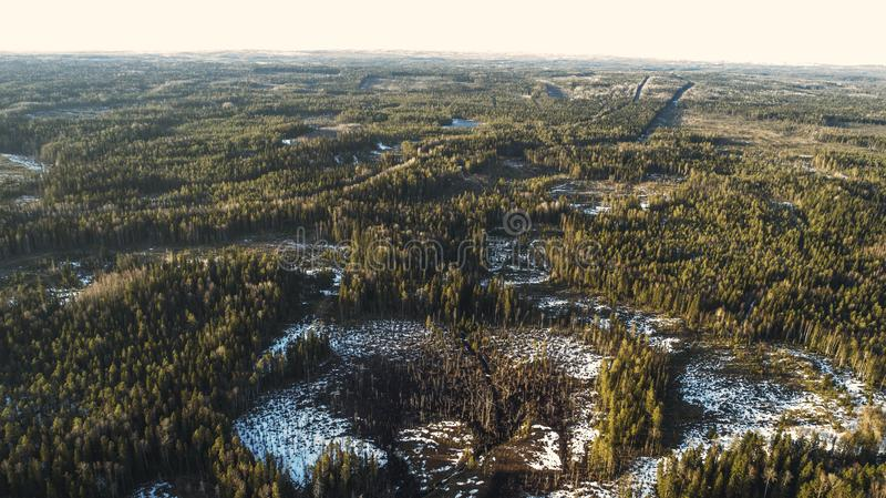 Εναέρια άποψη των παλαιών λειωμένων μετάλλων οδικού την άνοιξη δασικών χιονιού ασφάλτου στοκ εικόνες