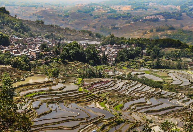Εναέρια άποψη των πεζουλιών ρυζιού Yuanyang στοκ φωτογραφία