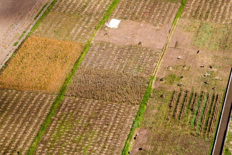 Εναέρια άποψη των τομέων κοντά σε Pisac, ιερή κοιλάδα Incas, pe στοκ εικόνες