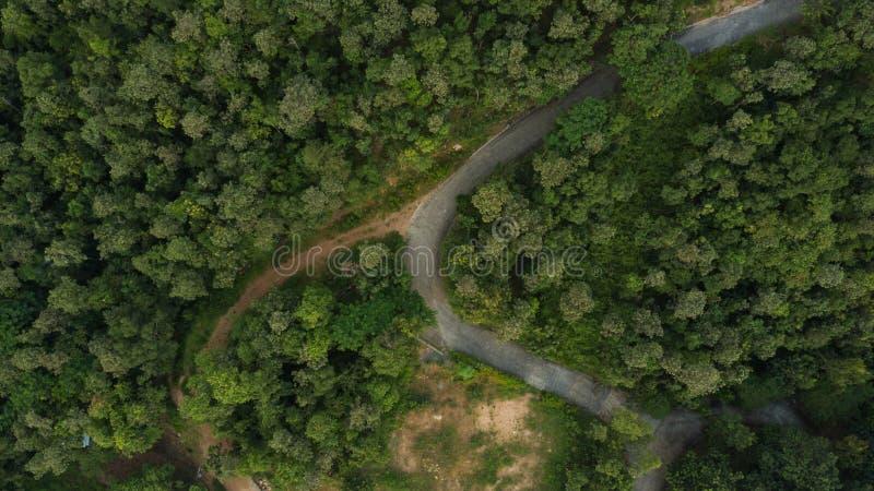 Εναέρια τοπ άποψη τοπ άποψης του δρόμου στοκ φωτογραφία με δικαίωμα ελεύθερης χρήσης
