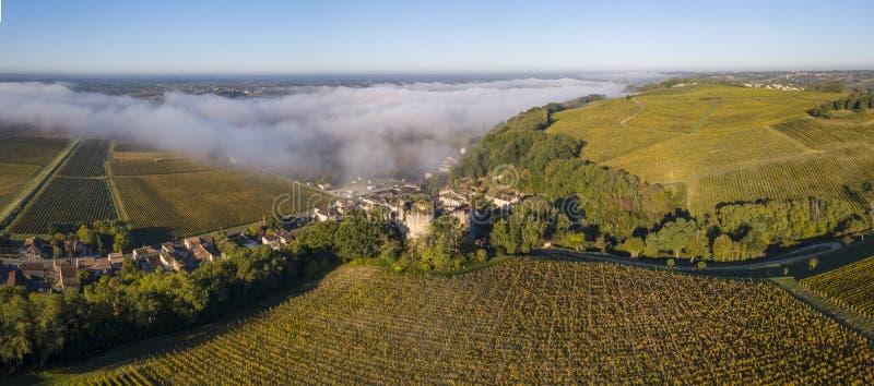 Εναέριος αμπελώνας του Μπορντώ άποψης στην ανατολή, Entre deux mers, Langoiran, Gironde στοκ εικόνες με δικαίωμα ελεύθερης χρήσης