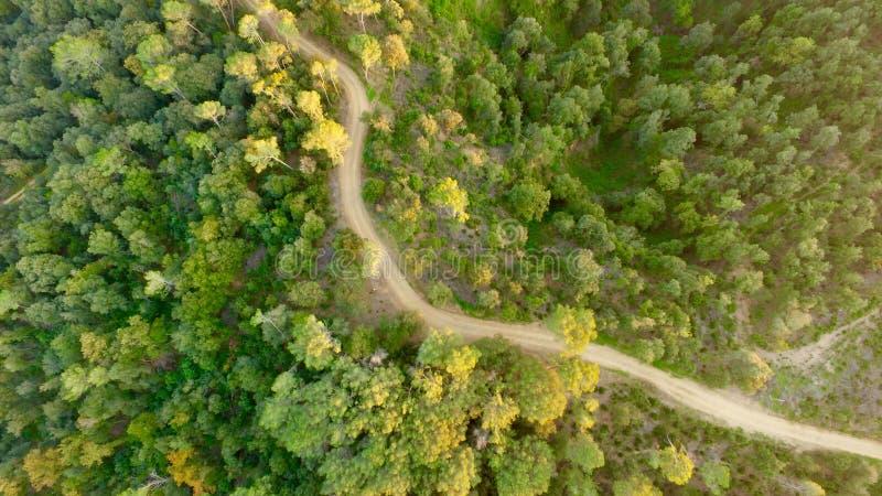 Εναέριος photografy στο δάσος στοκ εικόνες