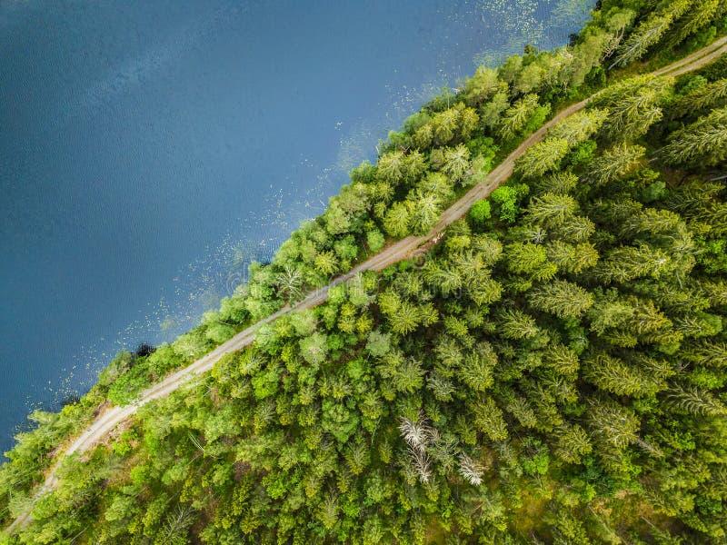 εναέριο veiw του κενού δρόμου στο πράσινο δάσος με την μπλε λίμνη πυροβολισμός κηφήνων στοκ εικόνα με δικαίωμα ελεύθερης χρήσης
