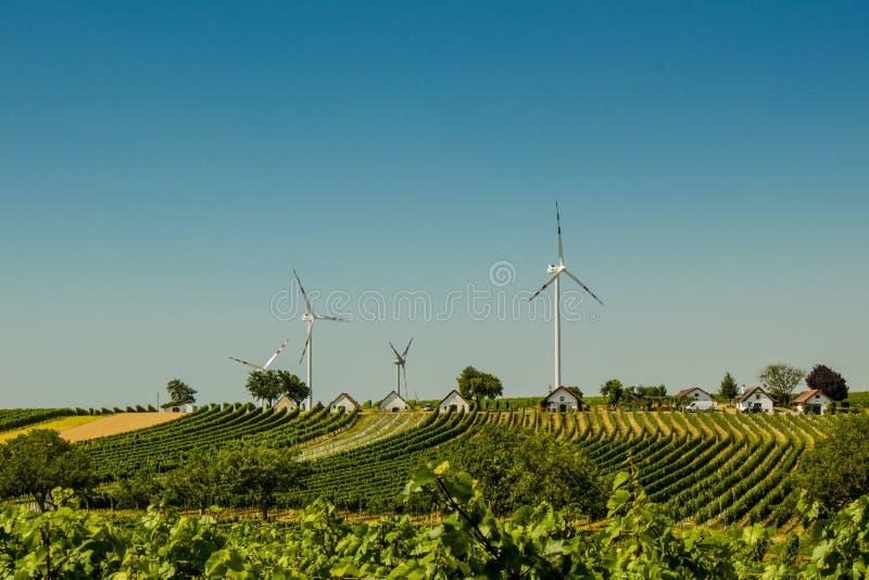 εναλλακτική ενέργεια Η ενέργεια του μέλλοντος Γεννήτριες αέρα στο χωριό Φυτείες σταφυλιών στοκ φωτογραφία με δικαίωμα ελεύθερης χρήσης