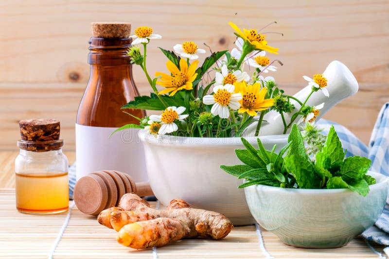 Εναλλακτικός φρέσκος βοτανικός υγειονομικής περίθαλψης, μέλι και άγριο λουλούδι με στοκ εικόνα με δικαίωμα ελεύθερης χρήσης