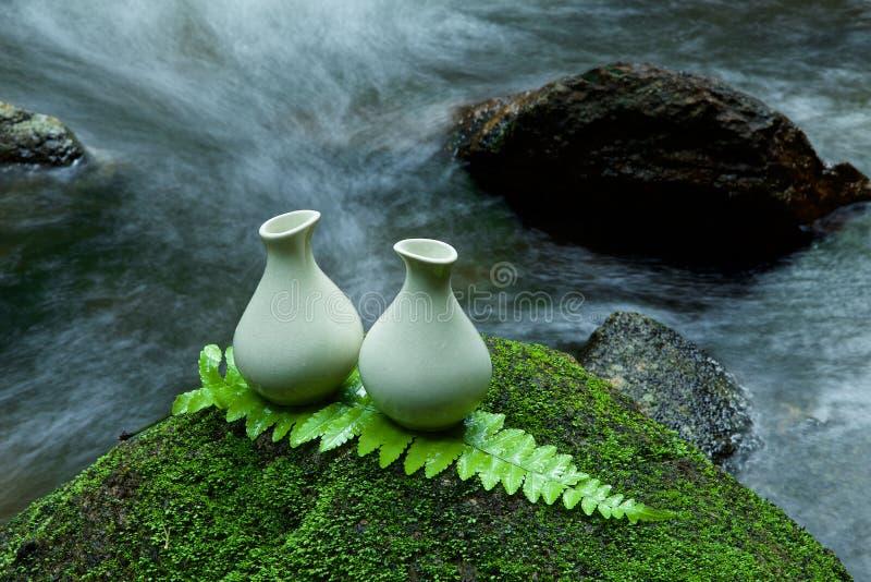 Εναλλακτικό σπιτικό λοσιόν φροντίδας δέρματος στην πέτρα, πράσινο φύλλο με στοκ εικόνες με δικαίωμα ελεύθερης χρήσης