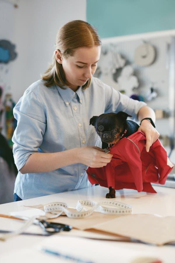 Ενδύματα σκυλιών Θηλυκός ράφτης που φορά το κοστούμι στη Pet στοκ εικόνα
