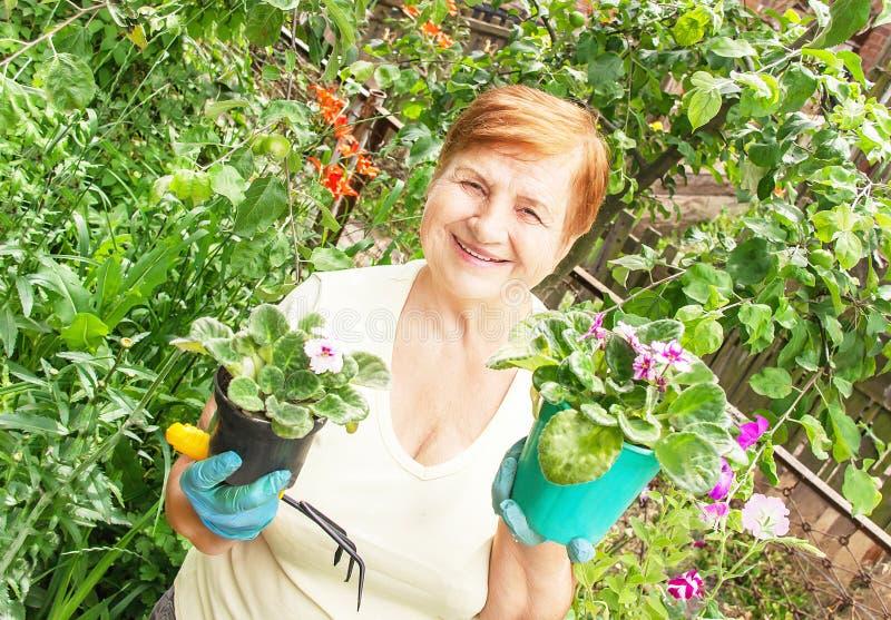 Ενεργός ανώτερη ηλικιωμένη γυναίκα κηπουρών με τα δοχεία των λουλουδιών στοκ εικόνες