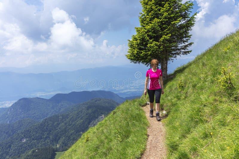 Ενεργός γυναίκα που στα βουνά επάνω από την κοιλάδα στοκ εικόνα