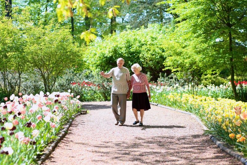 Ενεργό ανώτερο ζεύγος στο όμορφο πάρκο λουλουδιών στοκ εικόνα