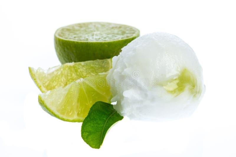 Ενιαία ξινή σφαίρα παγωτού λεμονιών με το λεμόνι και το φύλλο λεμονιών στοκ φωτογραφία