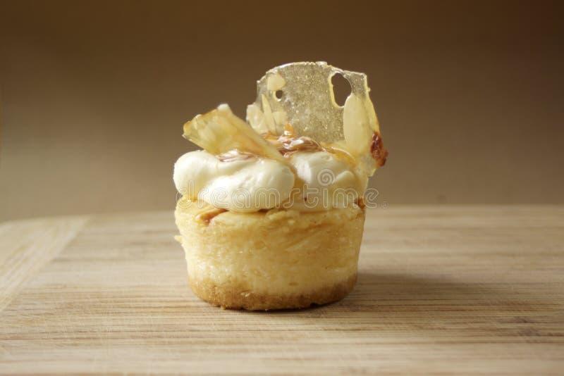 Ενιαίος εξυπηρετήστε ολοκληρωμένο cheesecake καραμέλας το κρέμα επιδόρπιο μεταχειρίζεται στοκ εικόνα με δικαίωμα ελεύθερης χρήσης