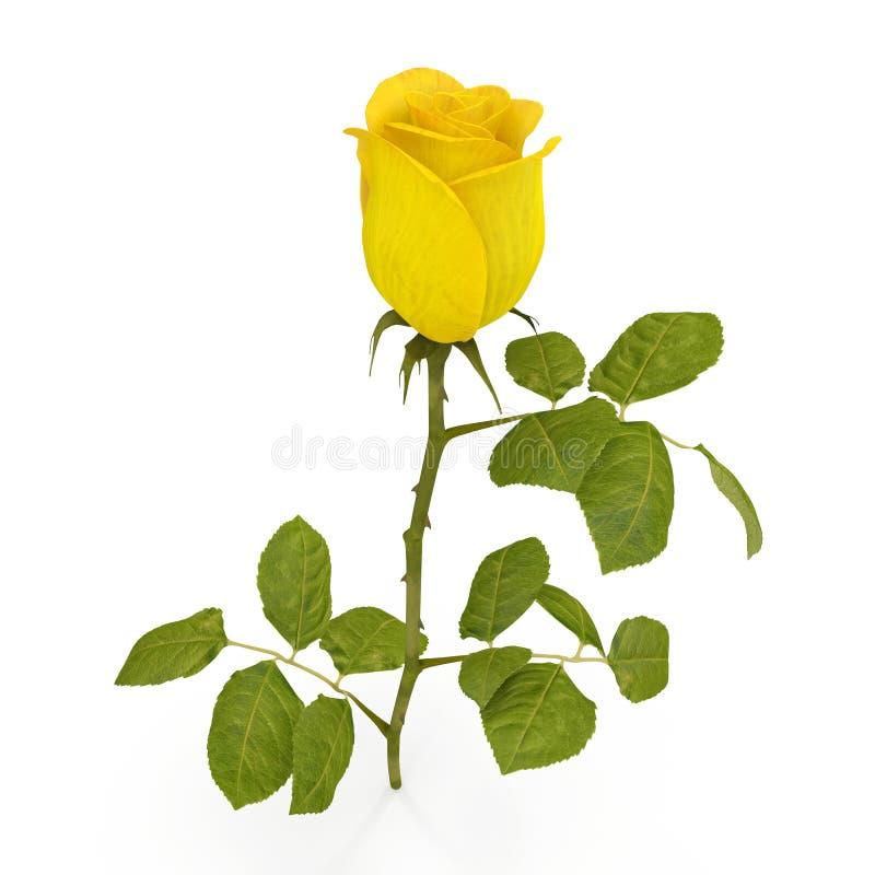 Ενιαίος όμορφος κίτρινος αυξήθηκε απομονωμένος στο λευκό τρισδιάστατη απεικόνιση διανυσματική απεικόνιση