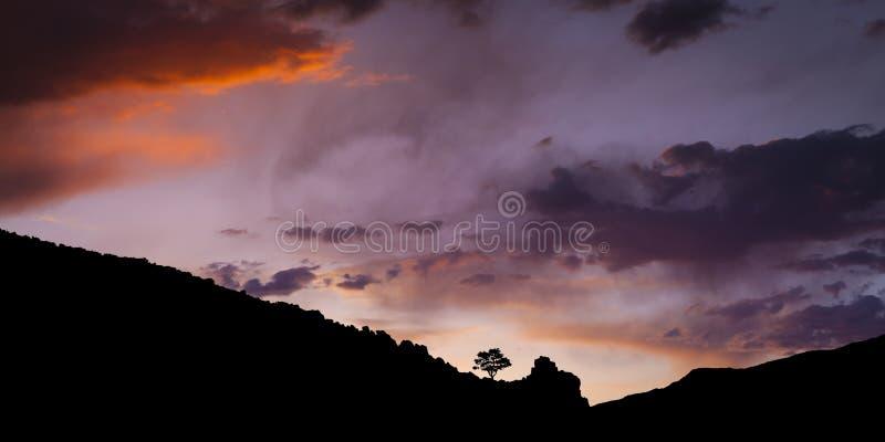 Ενιαίο δέντρο στο ηλιοβασίλεμα που σκιαγραφείται στη σειρά βουνών με τους ουρανούς ιστορίας στοκ εικόνες