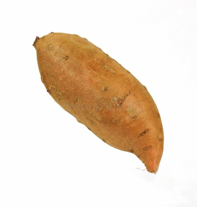 ενιαίο γλυκό πατατών στοκ φωτογραφία