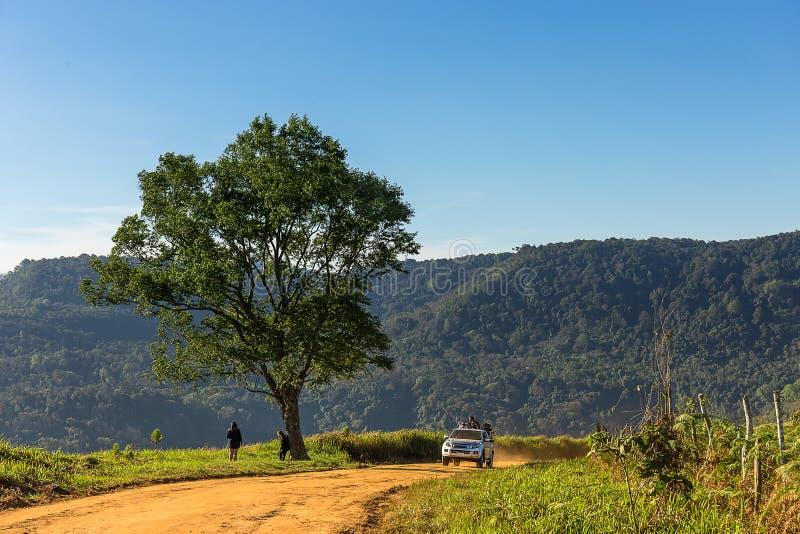 Ενιαίο δέντρο και ένα αυτοκίνητο που τρέχει στο βρώμικο δρόμο στο βουνό στοκ φωτογραφία
