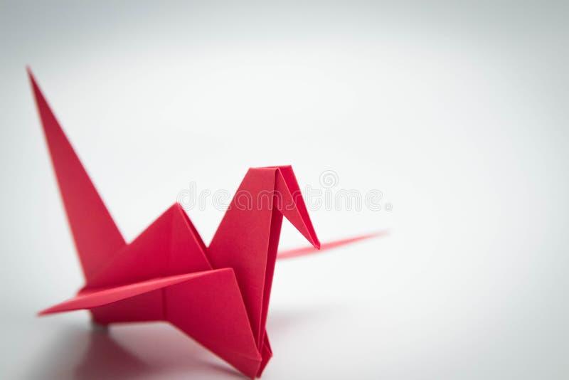 Ενιαίο κόκκινο origami πουλιών που απομονώνεται άσπρο σε στενό στοκ εικόνα