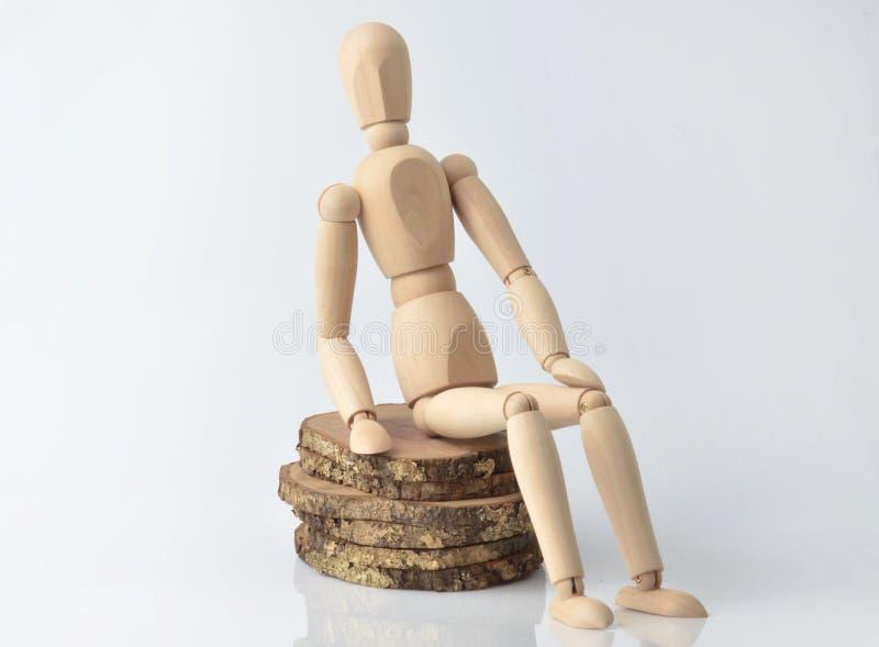 Ενιαίο ξύλινο ομοίωμα στοκ εικόνες με δικαίωμα ελεύθερης χρήσης