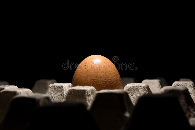 Ενιαίο φρέσκο αυγό κοτόπουλου στο δίσκο με το μαύρο υπόβαθρο στοκ εικόνα με δικαίωμα ελεύθερης χρήσης