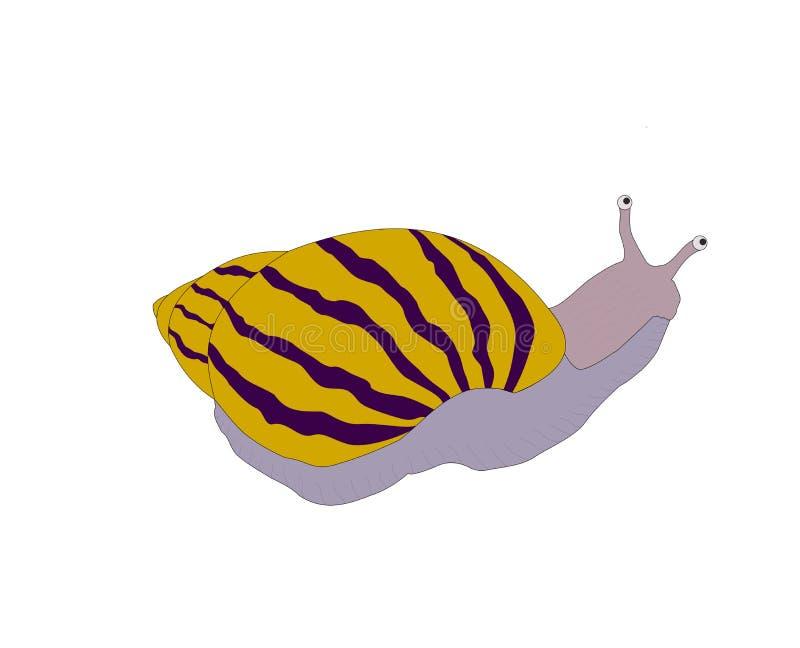 Ενιαίο όμορφο σαλιγκάρι που απομονώνεται διανυσματική απεικόνιση