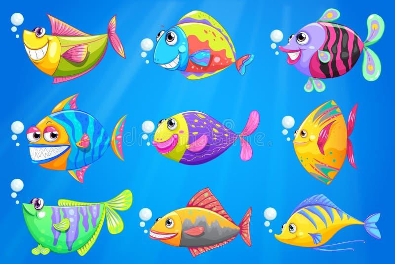 Εννέα ζωηρόχρωμα ψάρια κάτω από τη θάλασσα απεικόνιση αποθεμάτων
