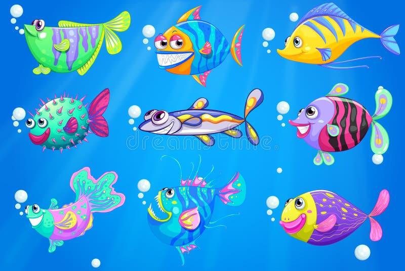Εννέα ζωηρόχρωμα ψάρια κάτω από τη θάλασσα ελεύθερη απεικόνιση δικαιώματος