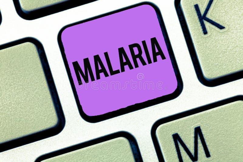 Εννοιολογικό χέρι που γράφει παρουσιάζοντας ελονοσία Επιχειρησιακή φωτογραφία που επιδεικνύει τις απειλητικές για τη ζωή μεταδιδό στοκ φωτογραφίες