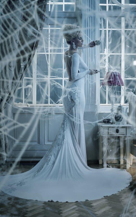 Εννοιολογικό πορτρέτο μιας κομψής κυρίας που τυλίγεται με μια αράχνη ` s W στοκ φωτογραφίες με δικαίωμα ελεύθερης χρήσης