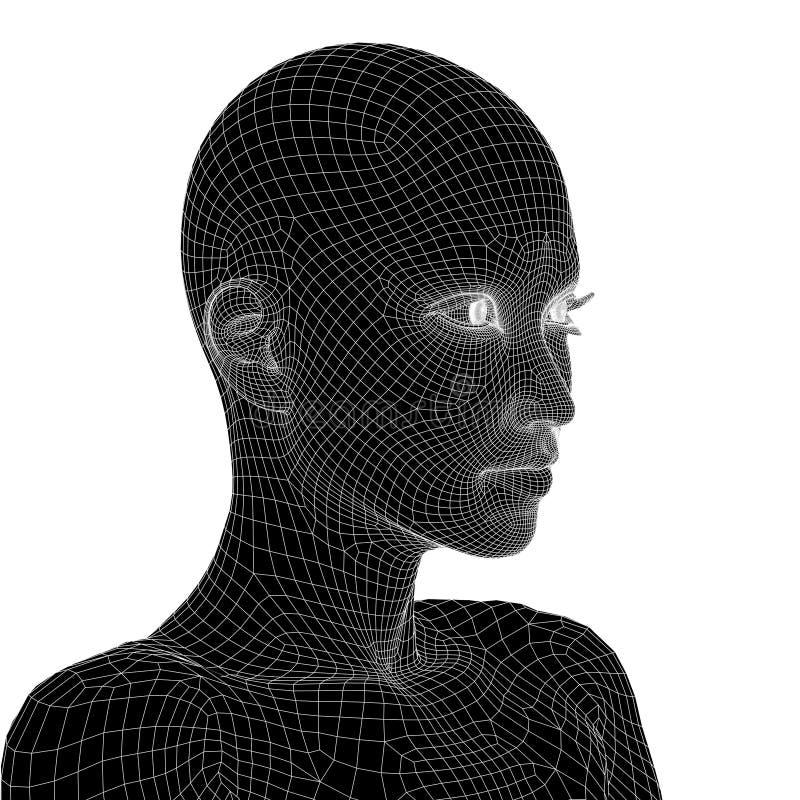 Εννοιολογικό τρισδιάστατο ανθρώπινο θηλυκό wireframe ή πρόσωπο ή κεφάλι γυναικών ελεύθερη απεικόνιση δικαιώματος