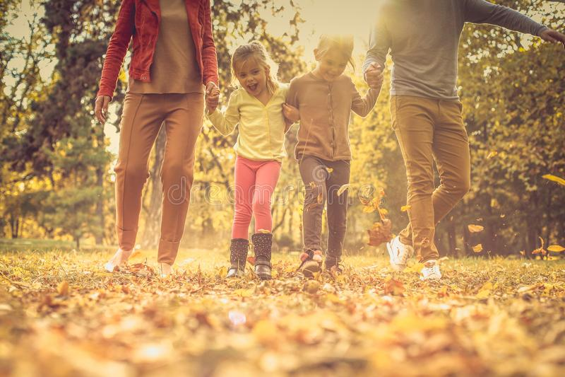 Εντάξει, ποιοι που τρέχουν γρηγορότερα; Οικογενειακή συγκέντρωση δασική εποχή μονοπατιών πτώσης φθινοπώρου στοκ εικόνα