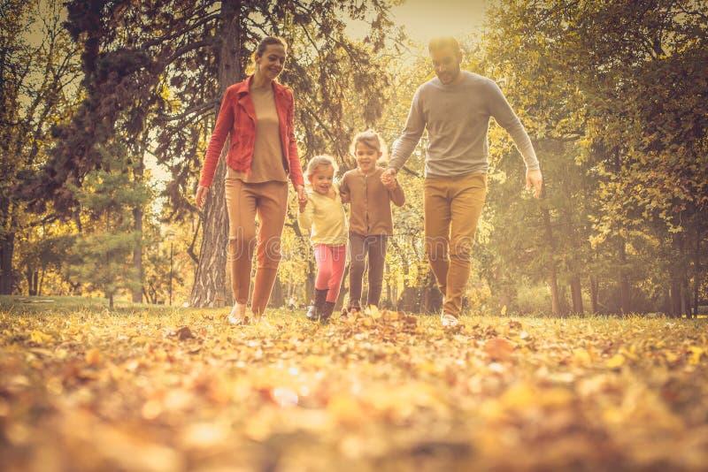 Εντάξει, ποιοι που τρέχουν γρηγορότερα; Οικογενειακή συγκέντρωση στοκ φωτογραφίες