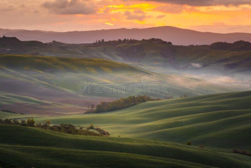 Εντυπωσιακό τοπίο άνοιξη, άποψη με τα κυπαρίσσια και τους αμπελώνες, Τοσκάνη, Ιταλία στοκ φωτογραφίες