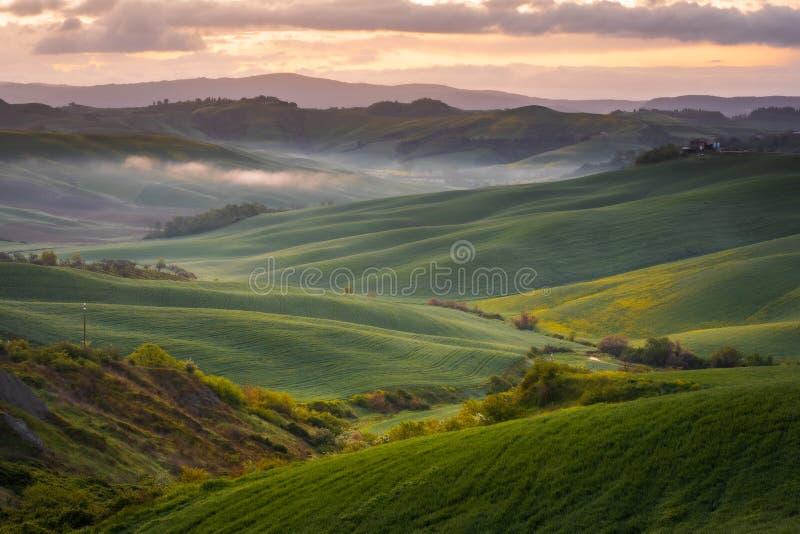 Εντυπωσιακό τοπίο άνοιξη, άποψη με τα κυπαρίσσια και τους αμπελώνες, Τοσκάνη, Ιταλία στοκ εικόνα με δικαίωμα ελεύθερης χρήσης