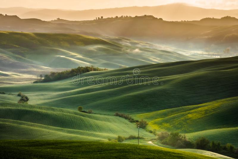 Εντυπωσιακό τοπίο άνοιξη, άποψη με τα κυπαρίσσια και τους αμπελώνες, Τοσκάνη, Ιταλία στοκ φωτογραφίες με δικαίωμα ελεύθερης χρήσης