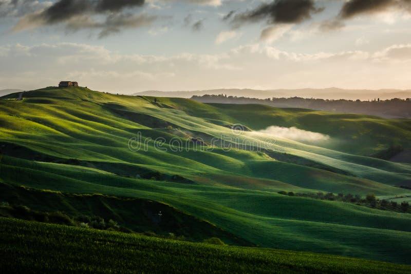 Εντυπωσιακό τοπίο άνοιξη, άποψη με τα κυπαρίσσια και τους αμπελώνες, Τοσκάνη, Ιταλία στοκ εικόνες
