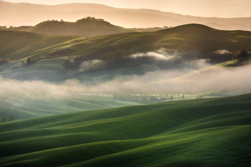 Εντυπωσιακό τοπίο άνοιξη, άποψη με τα κυπαρίσσια και τους αμπελώνες, Τοσκάνη, Ιταλία στοκ φωτογραφία με δικαίωμα ελεύθερης χρήσης