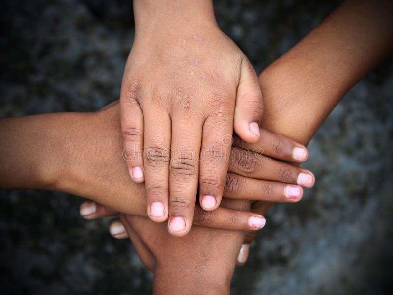 ενότητα στοκ εικόνες