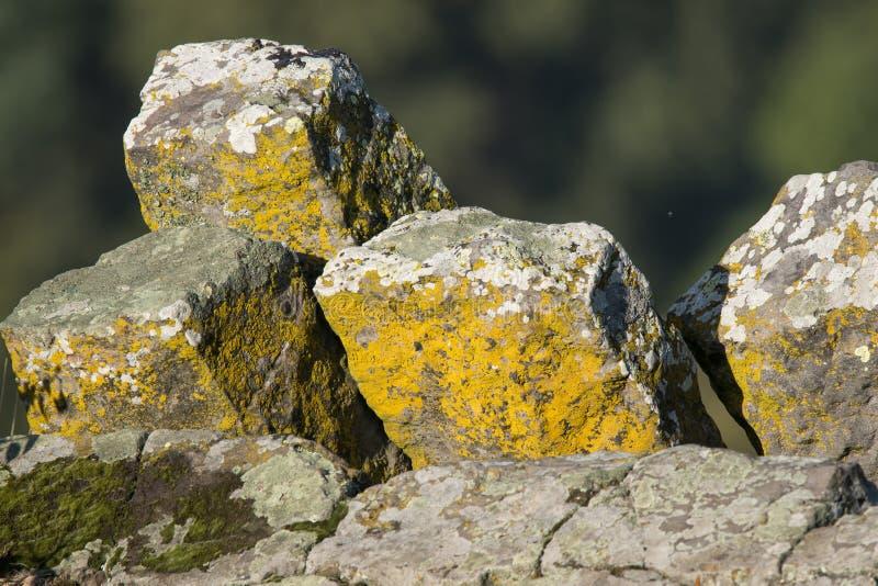 Ενδιαφέρων κιονοειδής βασάλτης στοκ εικόνα