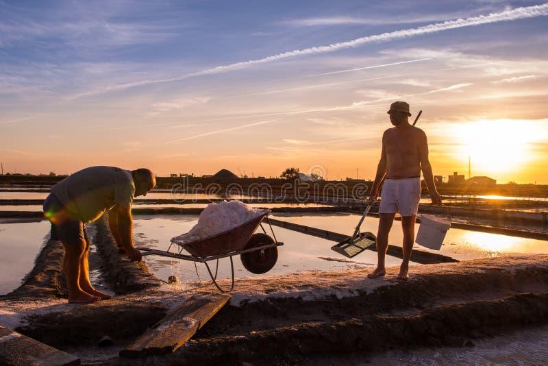 Εξαγωγή του άλατος θάλασσας στο Αβέιρο, Πορτογαλία στοκ φωτογραφία με δικαίωμα ελεύθερης χρήσης