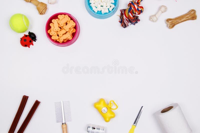 Εξαρτήματα, τρόφιμα και παιχνίδι της Pet στο άσπρο υπόβαθρο Επίπεδος βάλτε κορυφή στοκ εικόνα