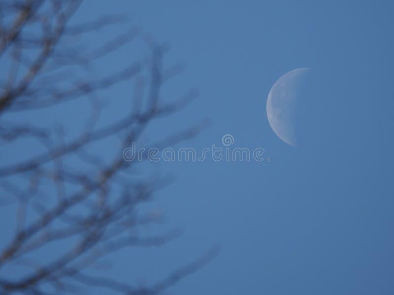 Εξασθενίζοντας ημισεληνοειδές φεγγάρι στοκ εικόνες με δικαίωμα ελεύθερης χρήσης