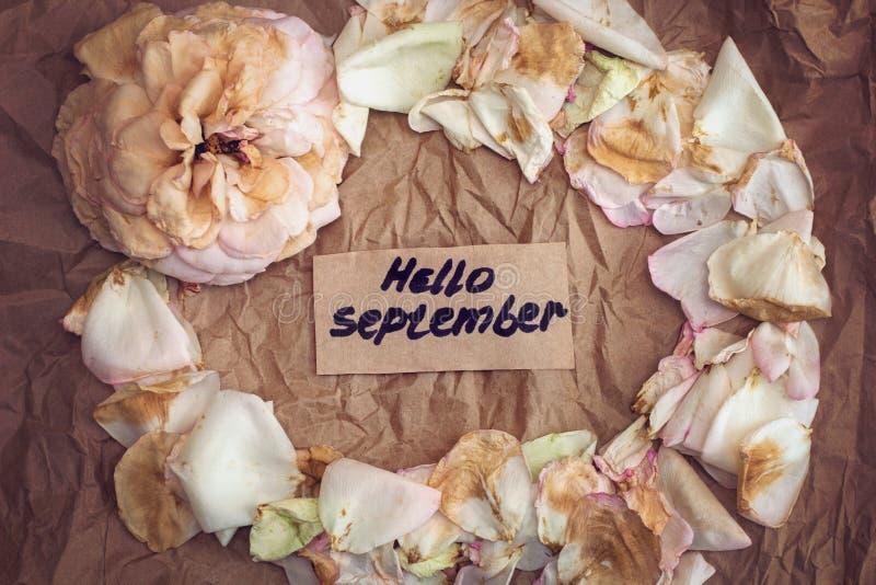 Εξασθενισμένος αυξήθηκε, εξασθένισε αυξήθηκε πέταλα και σημειώνει που λέει ` γειά σου Σεπτέμβριος ` διανυσματική απεικόνιση