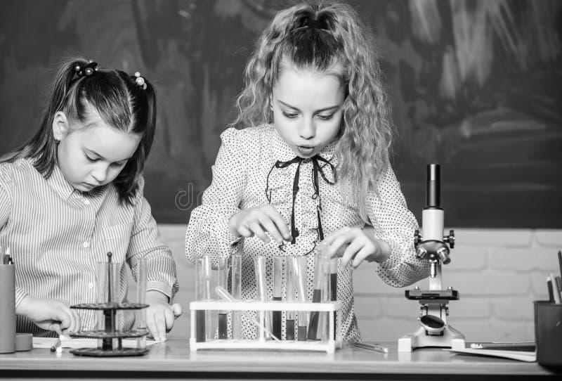 Εξοπλισμός χημείας σπουδαστές που κάνουν τα πειράματα της βιολογίας με το μικροσκόπιο στο εργαστήριο Εκπαίδευση χημείας περίεργα  στοκ φωτογραφίες με δικαίωμα ελεύθερης χρήσης