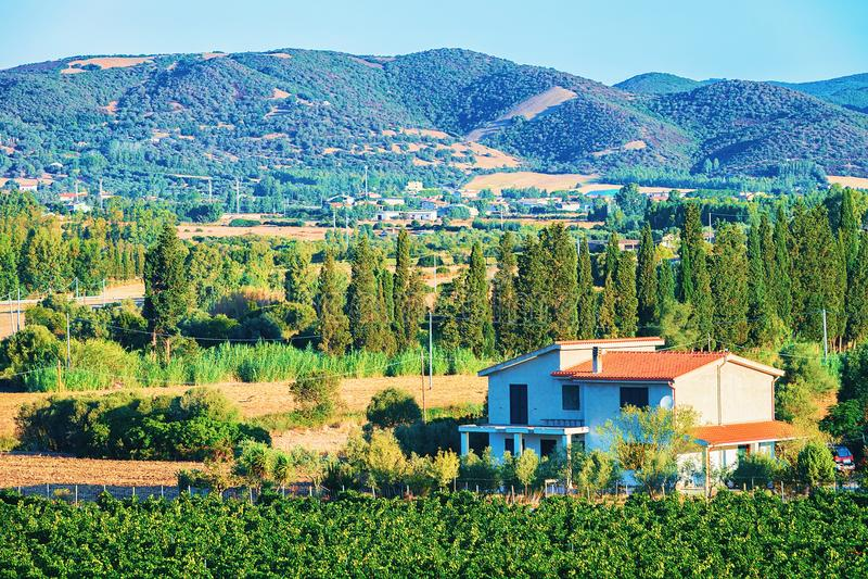 Εξοχικό σπίτι στο τοπίο αμπελώνων Perdaxious Carbonia Iglesias Σαρδηνία στοκ φωτογραφία με δικαίωμα ελεύθερης χρήσης