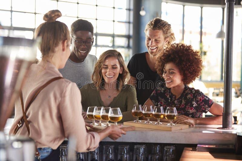 Εξυπηρετώντας ομάδα σερβιτορών δοκιμής μπύρας φίλων στο φραγμό στοκ εικόνες με δικαίωμα ελεύθερης χρήσης